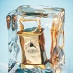 Ice Cube Clock Model